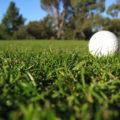 夫がゴルフ場で水虫菌に感染!?本人は気にせず家族だけが危機感を持つ